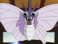 Venomoth de Koga