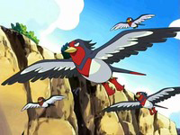 EP482 Swellow
