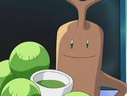 EP524 Infusión preparada por Brock para Pikachu