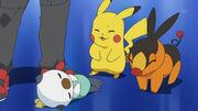 EP666 Pikachu, Oshawott y Tepig despues de la batalla