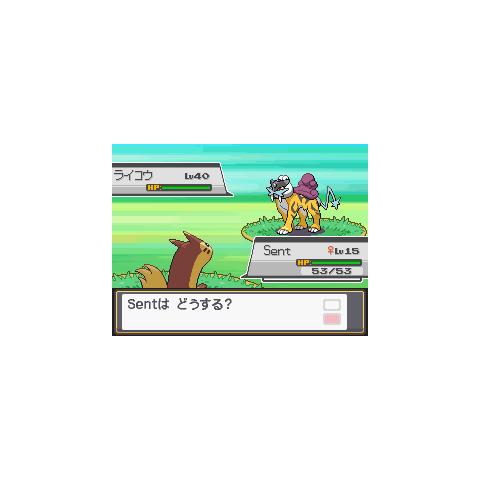 Encuentro con Raikou en Pokémon Oro HeartGold y Plata SoulSilver.
