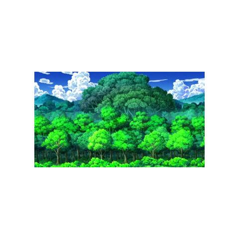 Bosque Azulejo por fuera.