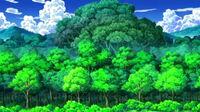 EP678 exterior del Bosque Yagurama