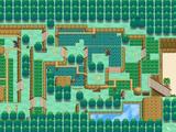 Guía de Pokémon Negro 2 y Pokémon Blanco 2/Liga Pokémon