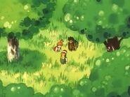 EP010 Protagonistas en el bosque