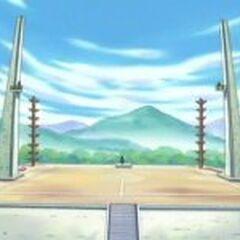 Gimnasio Pokémon de Ciudad Arborada. Pokémon <a href=