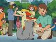 EP311 Coordinadores y Pokémon