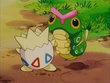 EP163 Togepi con un Caterpie