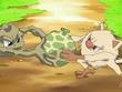 EP474 Mankey y Geodude peleando por una baya Meluce