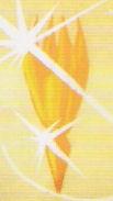 Solaricrystal