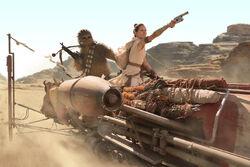 Rey-Chewie-Skimmer