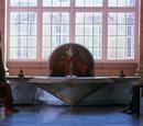 Consejo Real Consultivo de Naboo