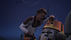 Lando Chopper