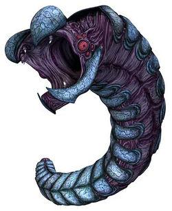 Rishi eel