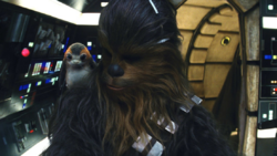 ChewbaccaPorg