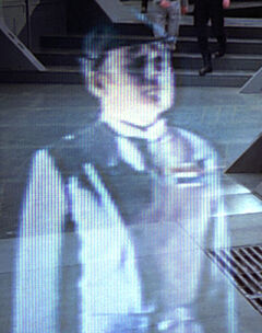 Archivo:Dying admiral.jpg