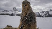 Reportaje Han Solo 8
