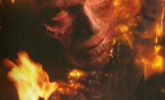 Anakin en llamas