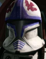 Hawk custom helmet
