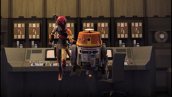 Sabine Chopper
