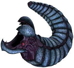 Rishi eel2