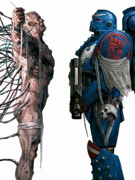 Marine Espacial implantes anatomía caparazón negro warhammer 40k wikihammer
