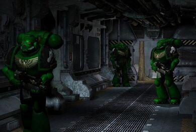 Marine salamandra 04