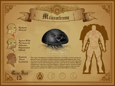 Space marine melanochrome
