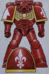 Marines esquema templarios rojos