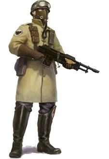 Legión de acero (regimientos)