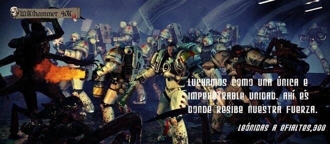 Cicatrices Blancas Wikihammer 40k Warhammer Marines Espaciales