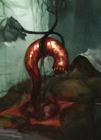 Xenos gusano de sinophia
