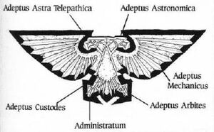 Aguila Imperial Imperio Significado Adeptus Wikihammer