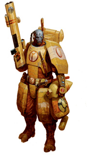Tau Firewarrior