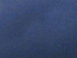 Falsos Dioses (Novela)