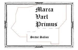 SECTOR SALIUS