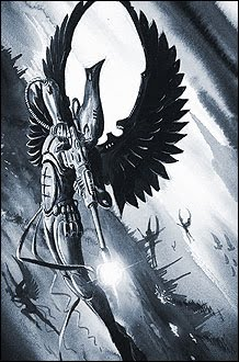 Swooping Hawks 2