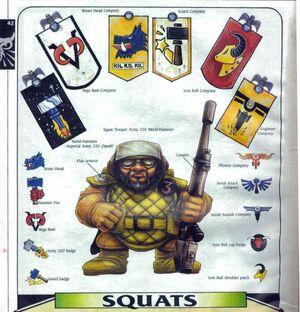 Insignias squat