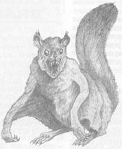 Ptera ardillas