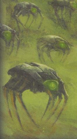 Enjambre Escarabajos