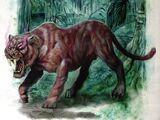 Gato de Phyrr