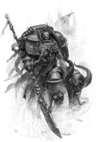 Marine caballero gris 2