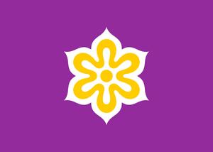 FEST flag