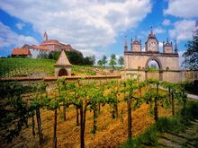 Horat castle and vineyard