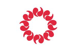 SEP flag
