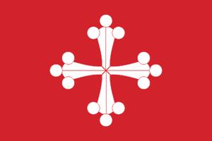 Flagofsancamilo