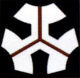 Bandera de Galbadia