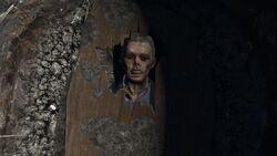 Brad cadaver