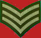 Veteran icon gte