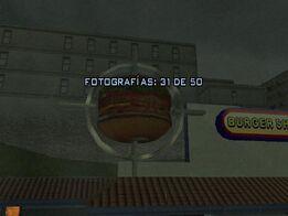 Fotografía 31